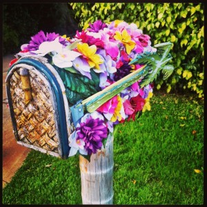Flower Mailbox So Cal