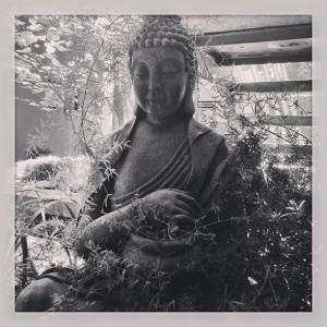 zen buddha photo by @sally_k
