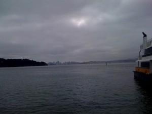 Foggy Tiburon