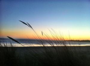 Stinson Beach 2013