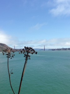 Pt. Bonita Lighthouse walk